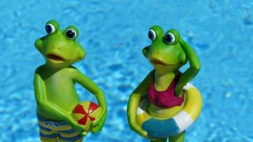 frog-830869_640